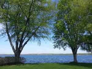 Mc Essy - lake