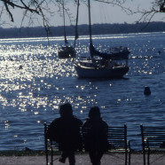 Couple On Bench By Lake