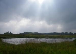 Town of Linn wetland